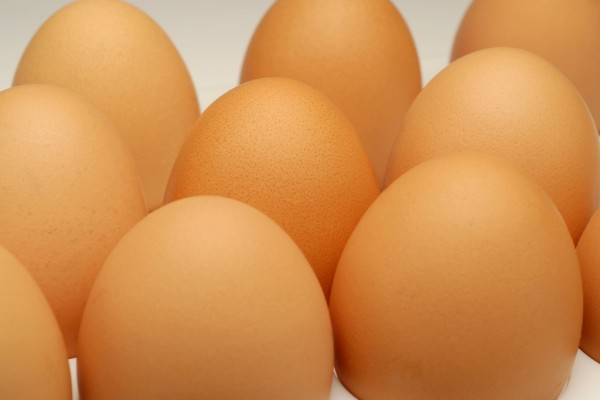eggs-newB6BD7A79-413E-94B7-F987-3D4CE26D64D0.jpg