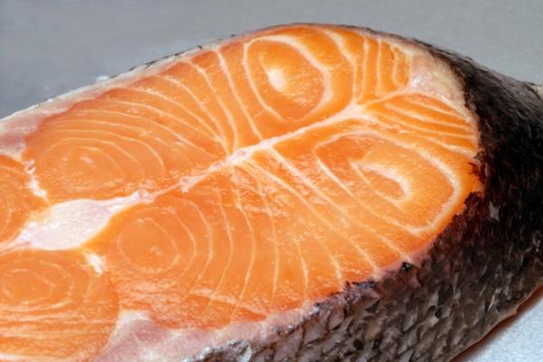 salmon56B3D474-0C09-8137-452A-0A98F2271A31.jpg