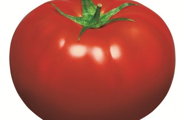 tomato5E1F5764-F04F-F84D-AEAE-3FB36E26422C.jpg